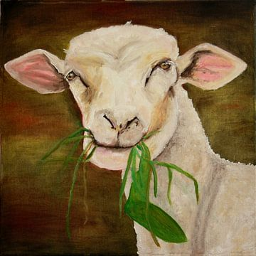 Sheep sur Andrea Meyer