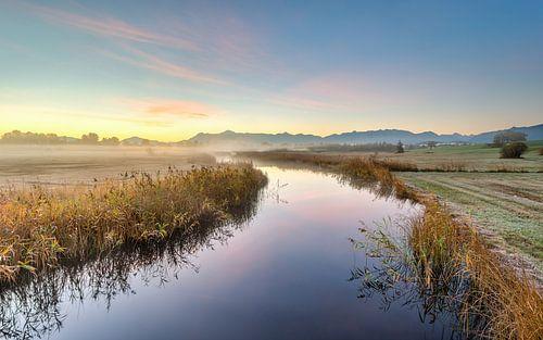 Autumn morning near Staffelsee van Michael Valjak