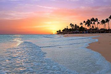 Druif strand met zonsondergang op Aruba in de Caribische Zee van Nisangha Masselink