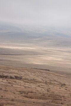 Heuvels met vee en Masai in Tanzania van Mickéle Godderis