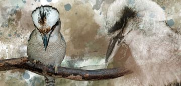 Twee Kookaburra's in een samengevoegd beeld van Fred en Roos van Maurik