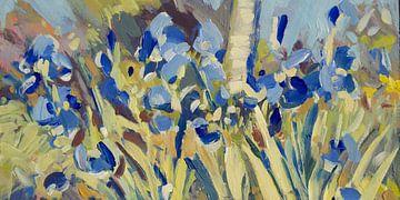 Blauwe irissen