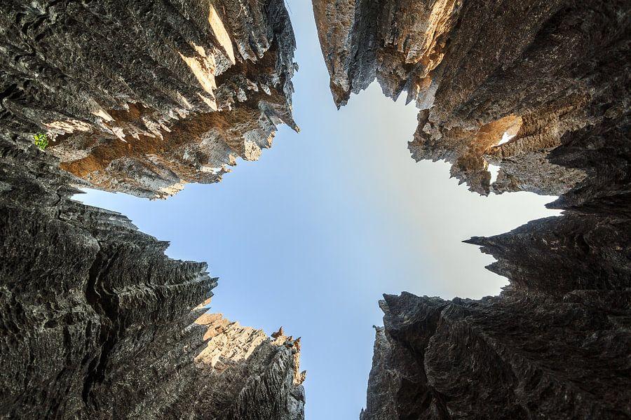 Hoge scherpe rotsen van de Tsingy in Madagaksar van Dennis van de Water