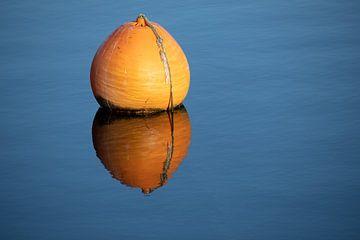 Oranje boei met reflectie in het blauwe kalme water van een meer, concept voor ontspanning, rustpauz van Maren Winter