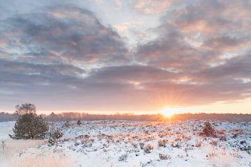 Winter Sonnenaufgang Kampina von Ruud Engels