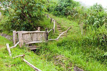 Een houten brug aan een klein beekje van Marcel Derweduwen