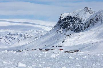 Raue Winter-Schönheit von Karla Leeftink