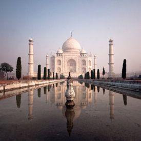 India Aperçu