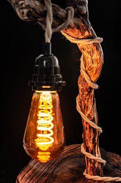 Baumstammlampe mit Hanfkabel von Dennis  Georgiev