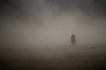 Rider of the storm van Myrna's Photography