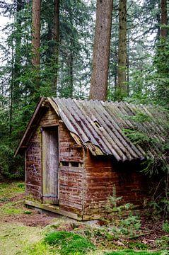 huisje in het bos van Mark van den Burg