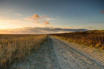 Strandweg Ameland van Tony Buijse