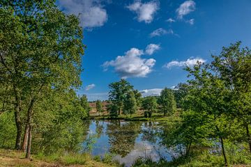 Pastoor Bode Pond van Dieter Rabenstein