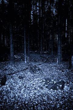 Dunkle Nacht Wald von Jan Brons