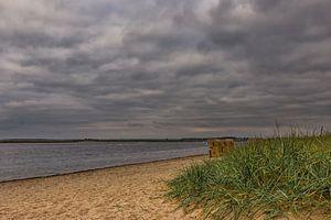 Baltic Sea beach van