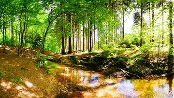 Wald mit Bach von Günter Albers