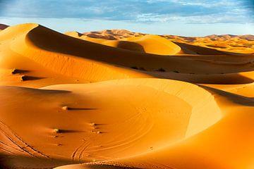 Sahara van Paul Piebinga