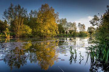 Lente reflectie van Wim van D