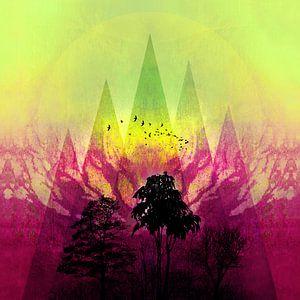 TREES under MAGIC MOUNTAINS V-2b