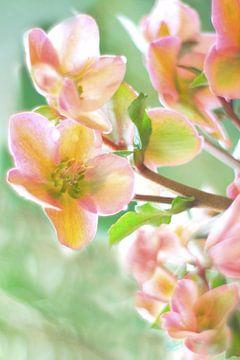 Bloemen in pastelkleur van Marianna Pobedimova
