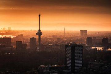 Der Euromast, Rotterdam von Anthony Malefijt