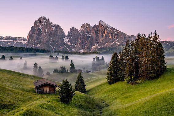 Frühlingsmorgen auf der Seiser Alm in Südtirol