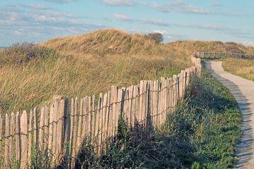 Cornering in the dunes of Egmond aan Zee sur Ronald Smits