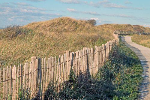 Bochtenwerk in de duinen van Ronald Smits