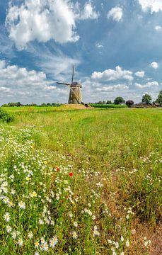 Beltmolen De Heimolen, Sint Hubert, , Noord-Brabant, Pays-Bas sur Rene van der Meer