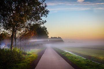 Mistige ochtend van Jaap Terpstra