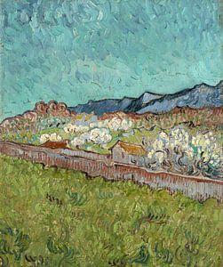 Vincent van Gogh, Gezicht op de Alpilles