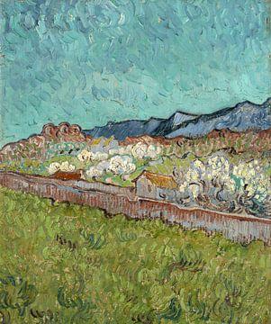 Vincent van Gogh, Blick auf die Alpillen
