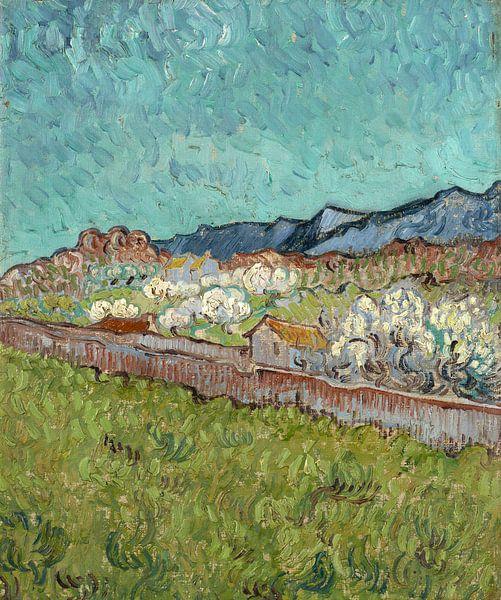 Vincent van Gogh, Gezicht op de Alpilles van 1000 Schilderijen