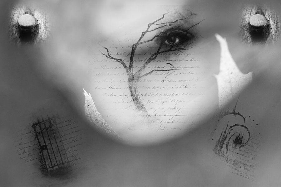 Oog abstract van Vandain Fotografie