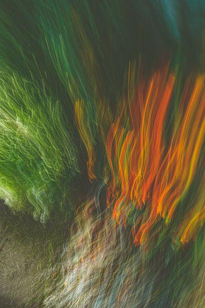 Feuer Gras von Jan Peter Jansen