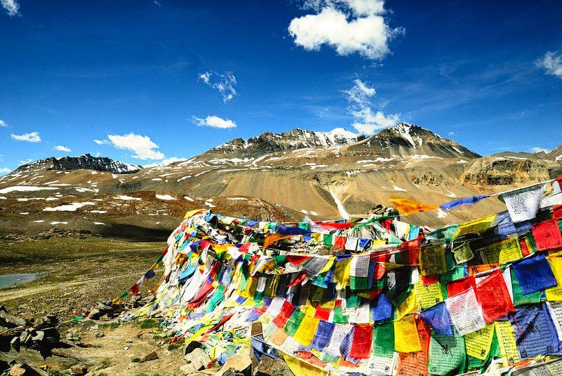 Landschap met gebedsvlaggen - Ladakh van Theo Molenaar