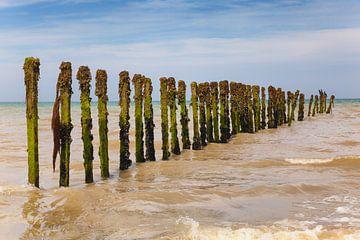 Wellenbrecher mit Kormoranen in Frankreich von Evert Jan Luchies