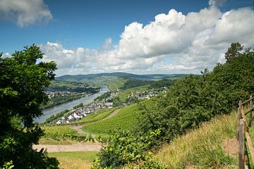 Mosel bei Bernkastel, Deutschland von Alexander Ludwig