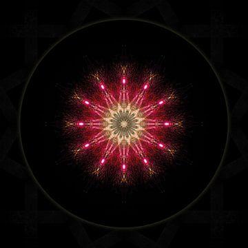 Rozenvenster - Rose Window van unacreadesign