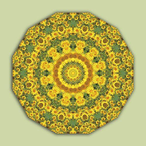 Sunflowers, Flower Mandala green