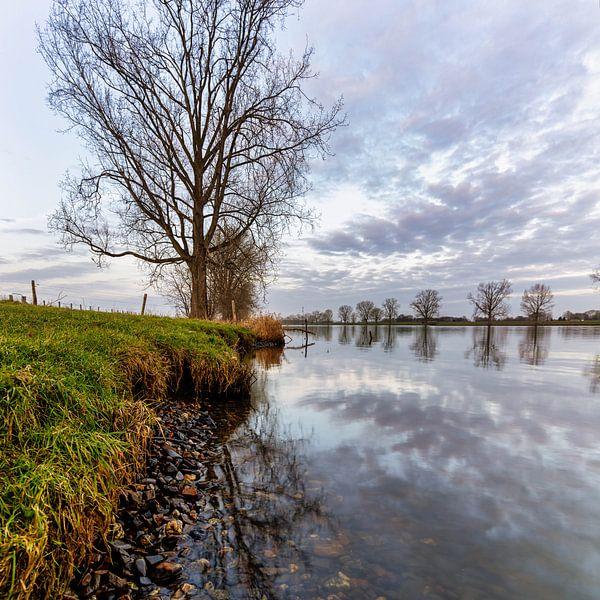 La rivière Maas près de Linden sur Anneke Hooijer