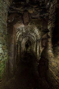 Tunnel met schim van Steven Langewouters