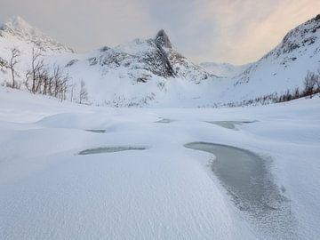 Lac enneigé avec en arrière-plan les magnifiques montagnes de Senja en Norvège. sur Jos Pannekoek