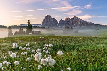 Seiser Am dans le Tyrol du Sud sur Achim Thomae
