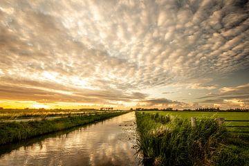 Gerippte Wolken über dem Beemdenbos in Den Haag von Cees van Gastel