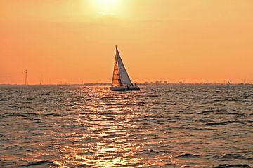 Segeln auf dem IJsselmeer bei Sonnenuntergang von Nisangha Masselink