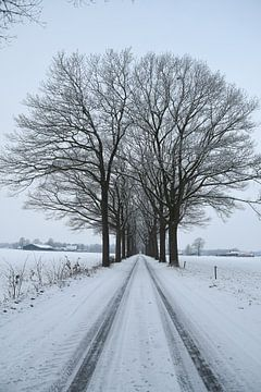 Landweg met sneeuw van Pauline Bergsma
