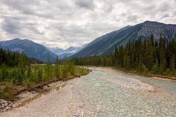 Kootenay NP in Canada van Vivo Fotografie