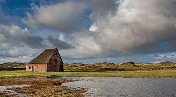 Bauernhof Texel mit niederländischer Luft von Erik van 't Hof