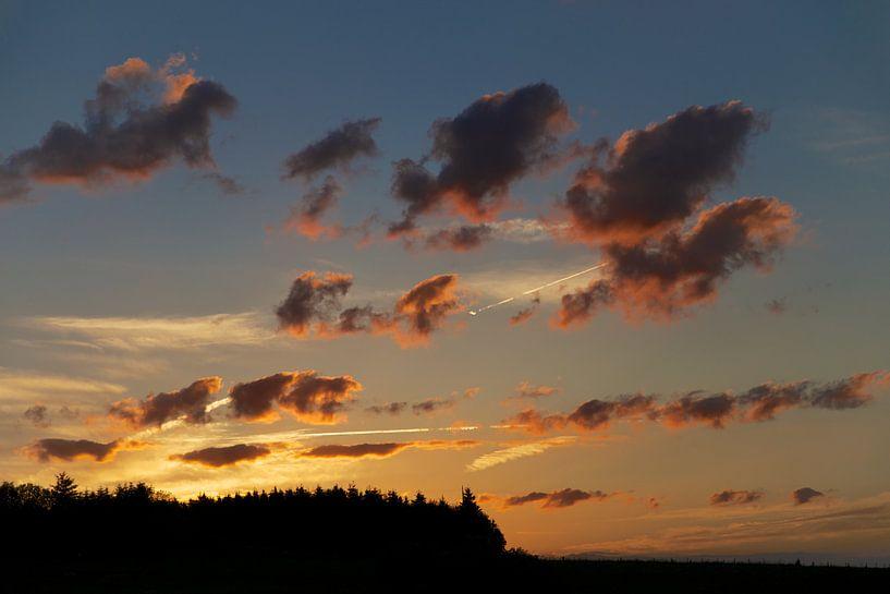 Dramatische wolken en condenssporen van vliegtuigen boven het silhouet van een dennenbos. van Emerik De Sadeleer